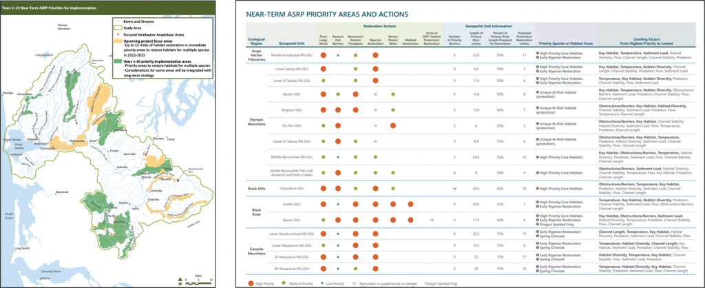 Near-term ASRP priority areas and actions